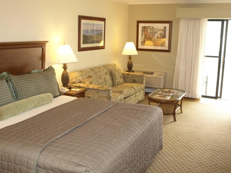Private Jacuzzi In Hotel Room In Virginia